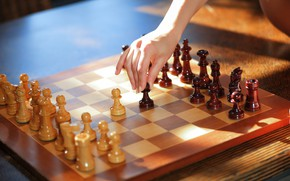 Картинка sport, game, tower, wood, horse, queen, hand, king, Chess, bishop, pieces, pawns, chessboard