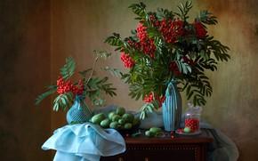 Картинка ветки, ягоды, банка, ткань, натюрморт, рябина, гроздья, вазы, Мила Миронова, эхиноцистис, колючеплодник