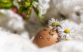 Картинка цветы, лицо, ресницы, праздник, яйцо, сон, ромашки, ветка, весна, макияж, Пасха, спит, девочка, мех, украшение, …