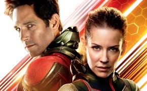 Обои Эванджелин Лилли, супергерои, фантастика, Wasp, костюмы, Пол Радд, Paul Rudd, Человек-муравей и Оса, Evangeline Lilly, ...