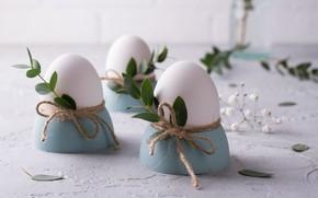 Картинка листья, яйца, подставка, веточки