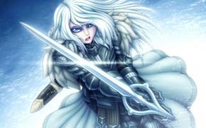 Картинка зима, взгляд, девушка, меч