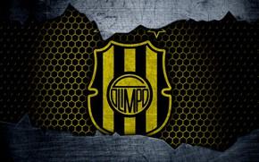 Картинка wallpaper, sport, logo, football, Olimpo