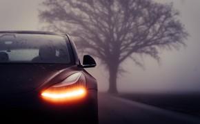 Картинка фара, Tesla, Model 3