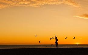 Картинка море, пляж, девушка, птицы, вечер, силуэт, New Zealand, orange sunset