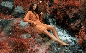 Картинка взгляд, девушка, поза, ручей, камни, ноги, платье, Nina, PixelFun, Berthold Zumbrink