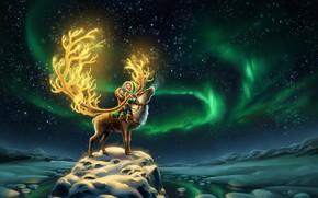 Картинка Небо, Ночь, Звезды, Снег, Дети, Олень, Аврора, Fantasy, Сестры, Aurora, Север, Животное, North, Reindeer, Северный …