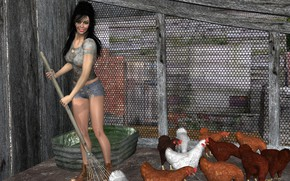 Картинка девушка, метла, куры, хозяйство