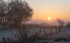 Картинка поле, небо, трава, солнце, деревья, туман, рассвет, забор, утро, изморозь