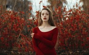 Картинка девушка, природа, Helena