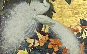 Картинка цветы, тропики, павлины, Jessie Arms Botke