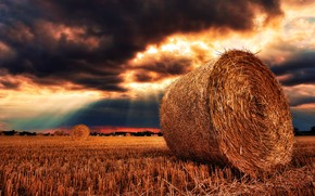 Картинка поле, лес, солнце, облака, лучи, сено, forest, field, the sun, clouds, rays, hay