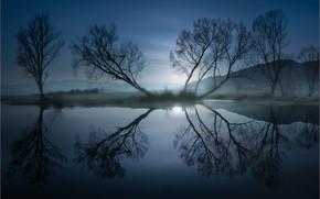 Картинка осень, деревья, горы, туман, отражение, дымка, сумерки, водоем