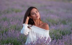 Картинка девушка, цветы, поза, настроение, луг, блузка, плечо, лаванда, Денис Ланкин, Виталина Афанасьева