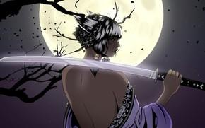 Картинка Девушка, Ночь, Луна, Стиль, Girl, Меч, Moon, Fantasy, Спина, Style, Night, Фантастика, Fiction, Катана, Back, …