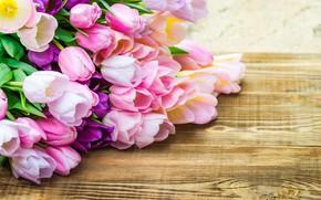 Картинка букет, тюльпаны, color