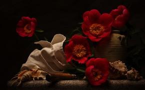 Картинка цветы, ракушки, натюрморт, салфетка, пионы