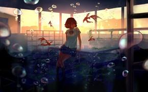 Картинка девушка, рыбы, закат, улыбка, пузыри, аниме, арт, форма, класс, школьница, под водой, парты, goroku