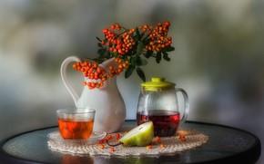 Картинка ягоды, чай, груша, напиток, кувшин, рябина