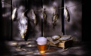 Картинка пена, бумага, доски, пиво, рыба, веревка, кружка, натюрморт, ящик, вобла, сушеная, вяленая