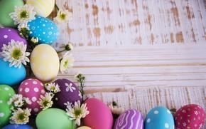Картинка праздник, яйца, пасха, хризантемы