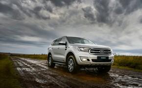 Картинка Ford, грязь, сырость, Everest, 4WD, XLT, 2019