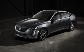 Картинка Cadillac, Sport, 2020, CT5