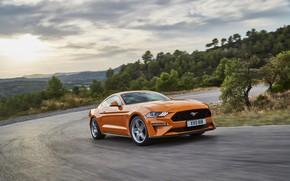 Обои Ford, поворот, 2018, движение, Mustang GT 5.0, оранжевый, фастбэк
