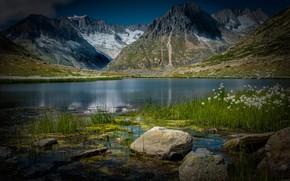 Картинка трава, пейзаж, горы, природа, озеро, камни, Швейцария