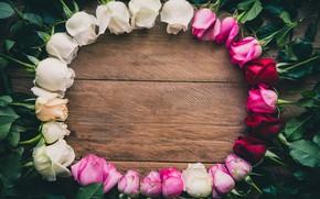 Обои цветы, розы, рамка, white, wood, pink, flowers, romantic, roses, frame
