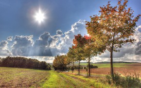 Картинка дорога, осень, небо, трава, солнце, облака, лучи, деревья, поля, HDR, Германия, Illerich