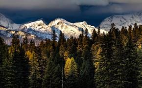 Картинка осень, лес, небо, свет, снег, горы, тучи, вершины, снежные