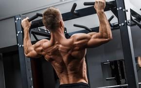 Картинка Спина, muscle, мышцы, Back, турник, workout, тренажерный зал, gym, training, weight, bodybuilder