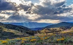 Картинка лето, небо, горы, природа