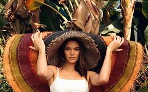 Картинка взгляд, девушка, лицо, поза, модель, Kendall Jenner