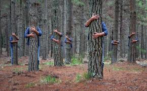 Картинка лес, деревья, люди
