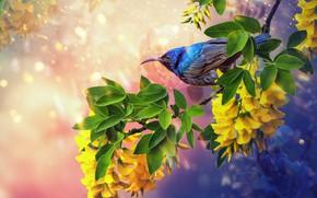 Картинка лето, цветы, птица, summer, bird, flowers