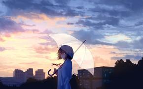 Картинка небо, девушка, деревья, город, зонт
