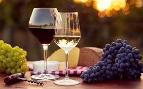 Картинка солнце, блики, стол, фон, вино, сыр, бокалы, хлеб, виноград, штопор, салфетка, боке