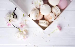 Картинка цветы, colorful, cake, flowers, пирожные, sweet, dessert, french, macaron, pastel, макаруны
