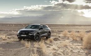 Картинка Quattro, 2018, кроссовер, S-Line, 55 TFSI, Audi Q8
