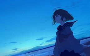 Картинка море, небо, девушка, сумерки, школьная форма