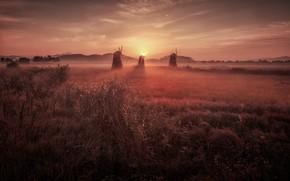 Картинка поле, небо, трава, солнце, облака, свет, пейзаж, природа, туман, розовый, рассвет, холмы, растительность, даль, утро, …
