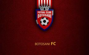 Картинка wallpaper, sport, logo, football, Botosani