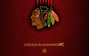 Картинка wallpaper, sport, logo, NHL, hockey, Chicago Blackhawks