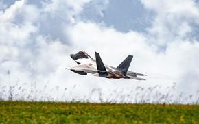 Картинка малозаметный, ВВС США, многоцелевой истребитель пятого поколения, Lockheed/Boeing F-22 Raptor