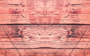 Картинка линии, дерево, геометрия