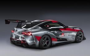 Картинка серый, фон, купе, Toyota, антикрыло, 2020, GR Supra Track Concept