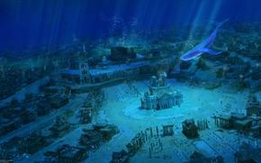 Картинка рыбы, город, кит, под водой, by ArseniXC, затоплен