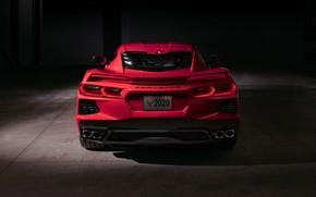Картинка Corvette, Chevrolet, Фары, Stingray, Спорткар, 2020, Chevrolet Corvette ( C8 ) Stingray